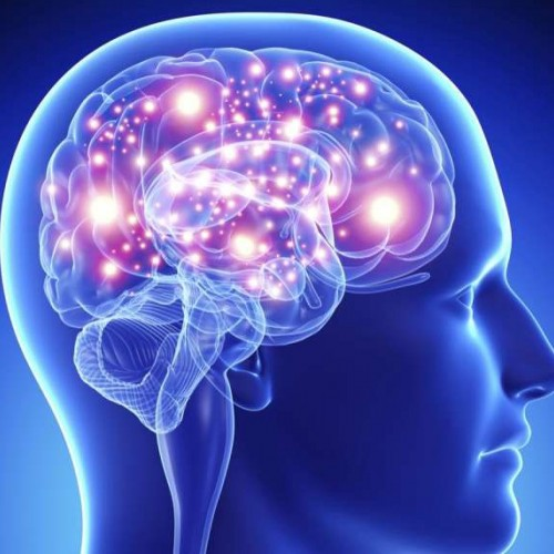 Optogenetics- Understanding the Human Brain